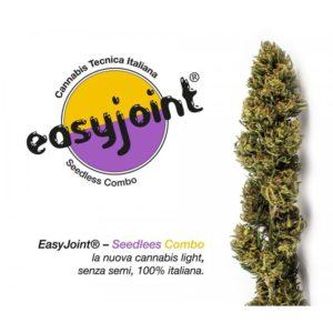 Seedlees Combo Maria Senza Semi compra online easyjoint roma Compra Online Easyjoint Roma marijuana shop online easyjoint seedless combo 300x300