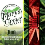 GROW SHOP CENTOCELLE ROMA e-commerce E-commerce Smo-King New Marysgrow 150x150