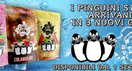 smo-king Smo-King Sigaretta Elettronica Roma pinguini 1 settembre 1630050892 460X250 c c 1 FFFFFF